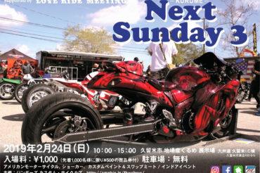 Next Sunday 3